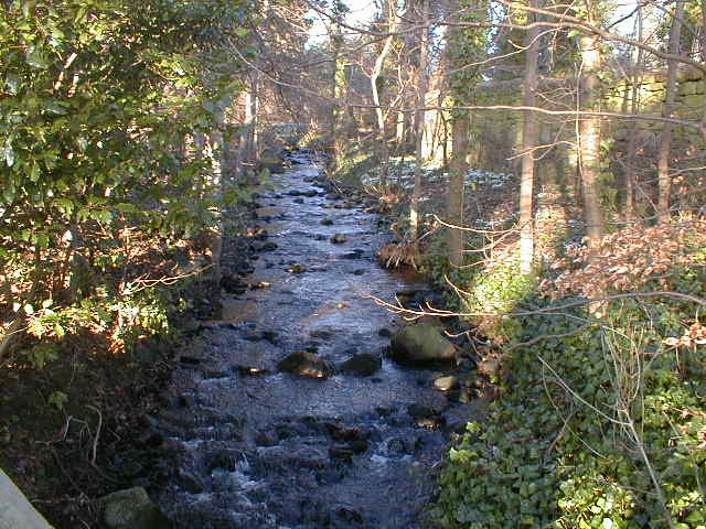 Mill Burn at Milton of Redcastle