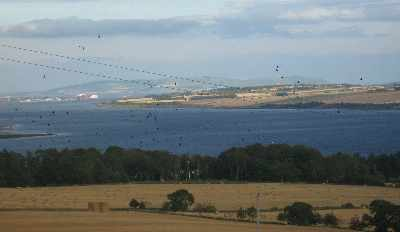 The Cromarty Firth from Ardullie Farm - photo 2