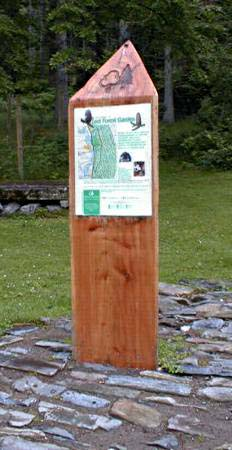 Lael forest walk signpost