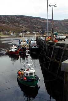 Fishing boats in Ullapool harbour.