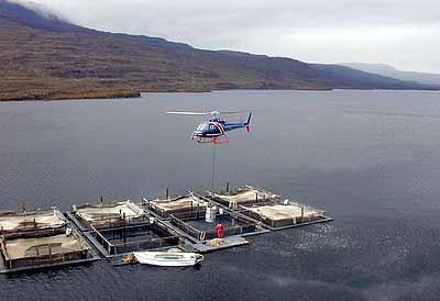 Loch Lundie Fish Farm