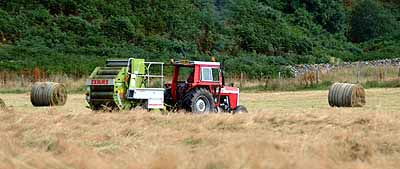 Harvesting at Auchtertyre