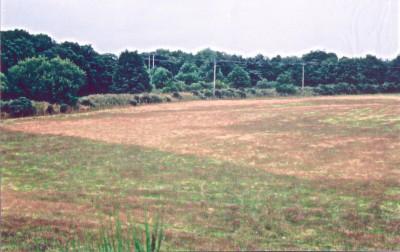 02 Maryburgh Environment