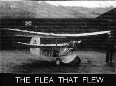 The Flea that Flew
