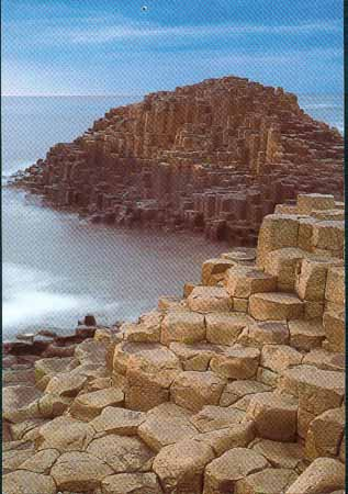 This is the Giant's Causeway in Ireland.It is a World Heritage Site.