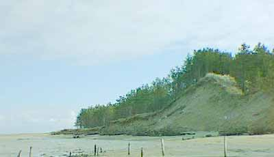 Eroded dune on NW edge of Morrich More