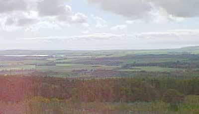 Plain of Ross