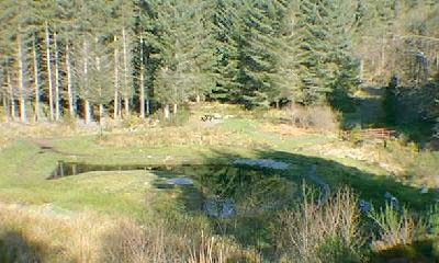 Looking down on the pond and picnic site