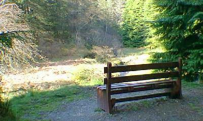 Seat with view along the Aldie Burn