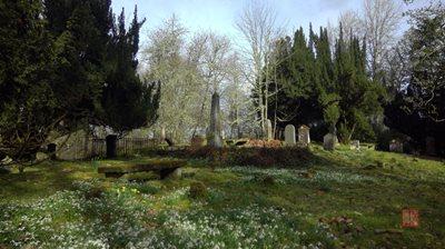The old cemetery at Logieside, Conon Bridge