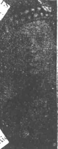 Grace William, L Corp, Kent Seaforths