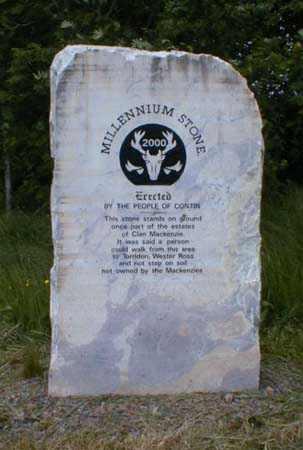 Contin Millennium Stone