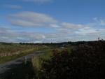 Looking east from Killearnan War Memorial.