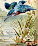 Watercolour from Visitors' book