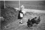 Donnie Mackenzie's niece, Chrisanna Maciver, feeding the hens