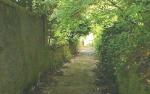 Cunarder Lane - The bottom end - photo 3